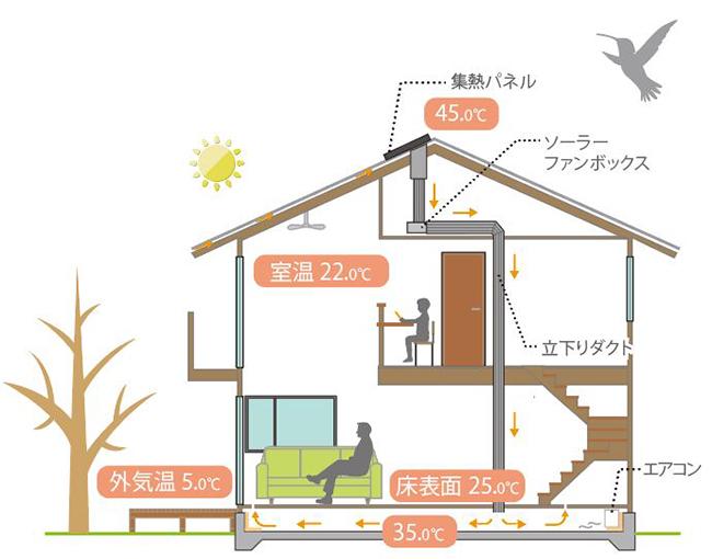 びお加納断面冬.JPG