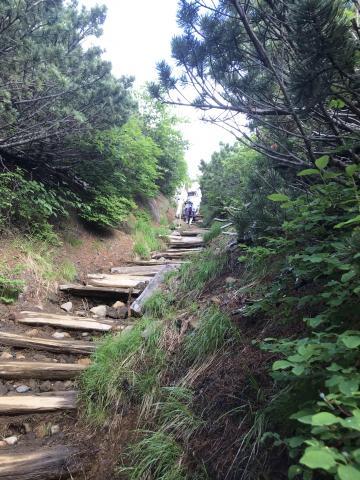 登山道.jpgのサムネイル画像